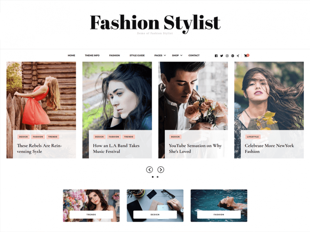 Free Fashion Stylist WordPress theme