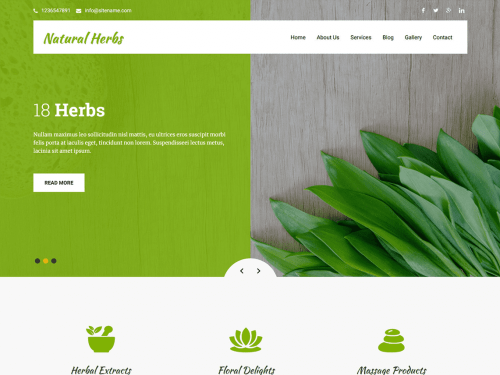 Free Natural Herbs Lite WordPress theme