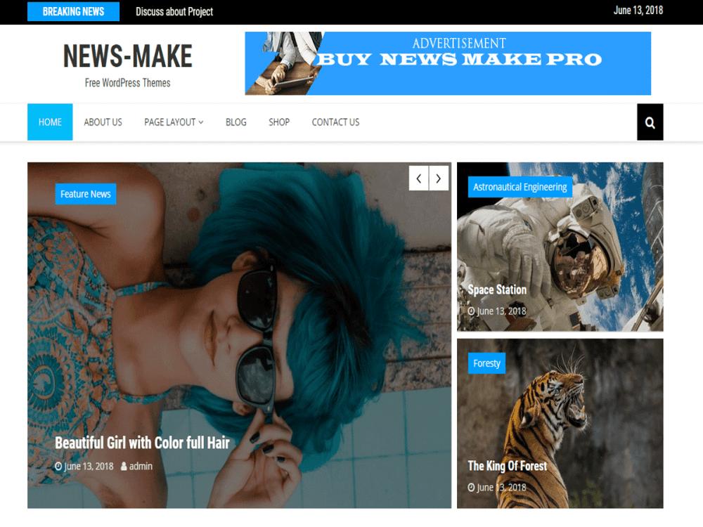 Free News Make WordPress theme