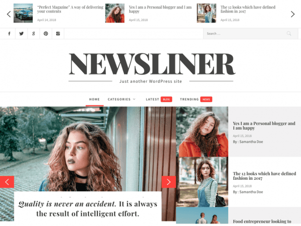 Free Newsliner WordPress theme