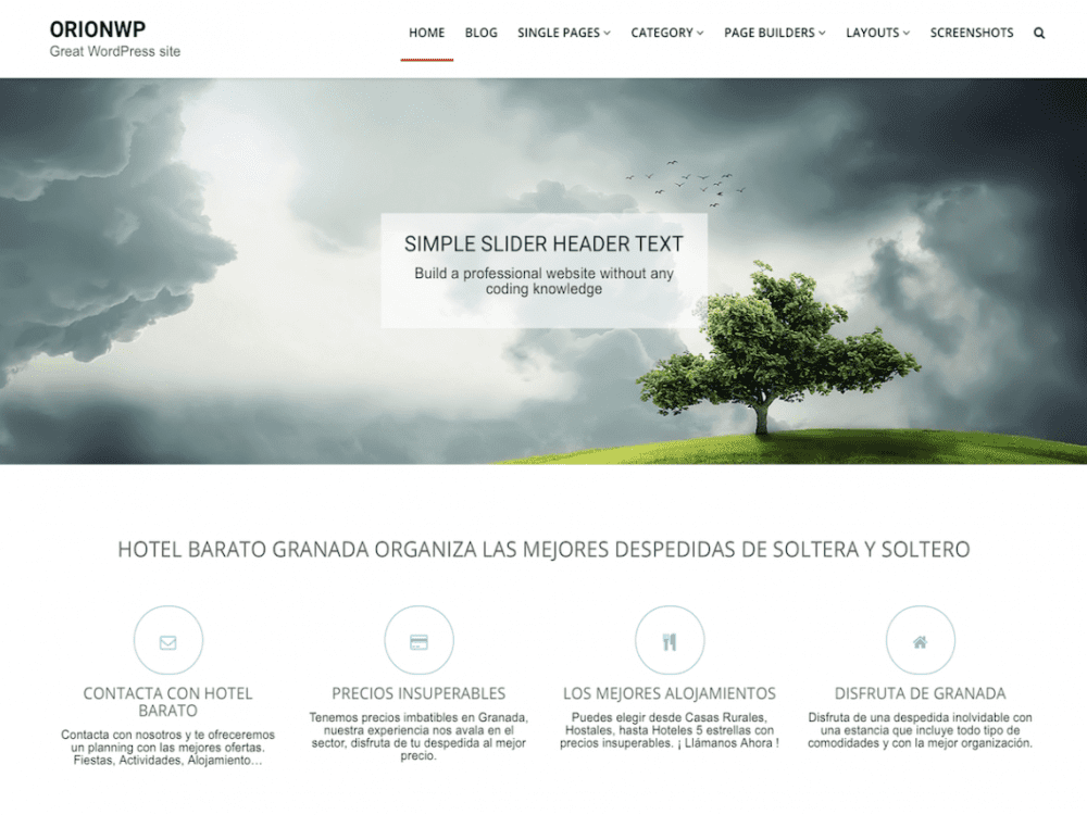 Free OrionWP WordPress theme