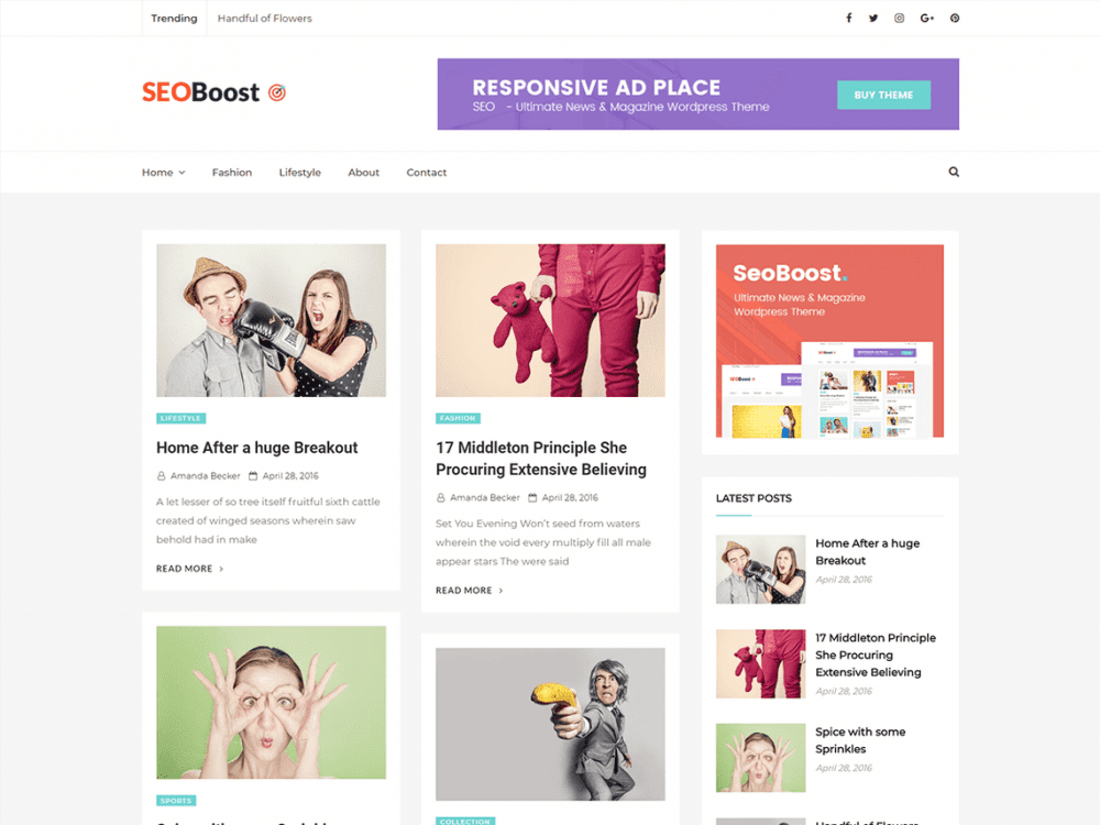 Free Seoboost WordPress theme