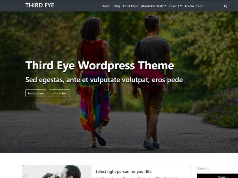 Free Third Eye WordPress theme