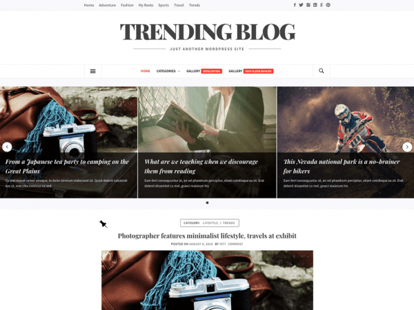 Free Trending Blog WordPress theme