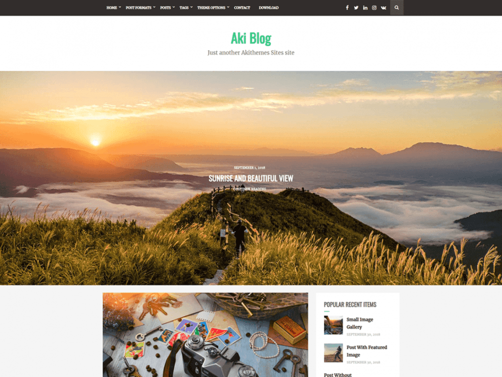 Free Aki Blog WordPress theme