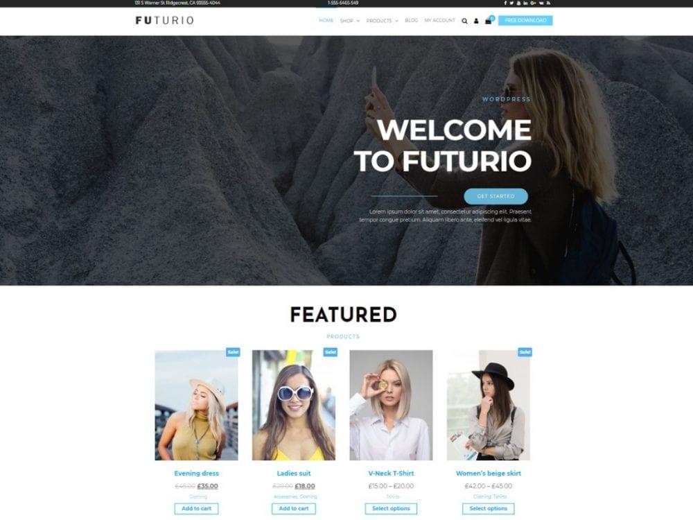 Free Futurio WordPress theme