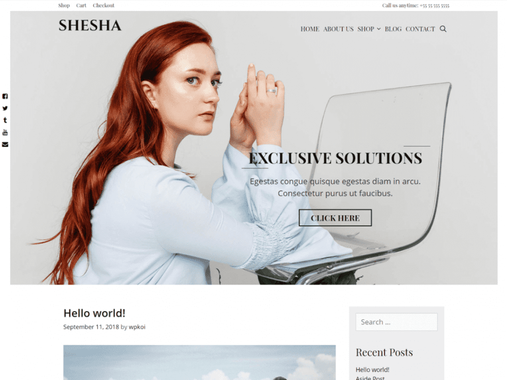 Free Shesha WordPress theme