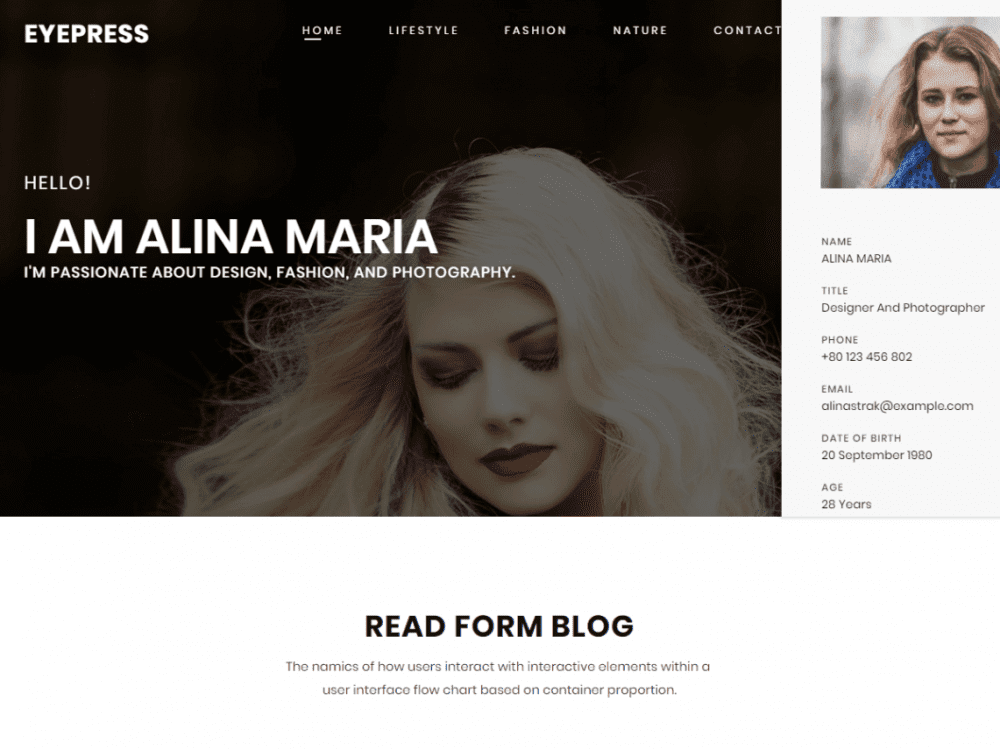 Free eyepress WordPress theme