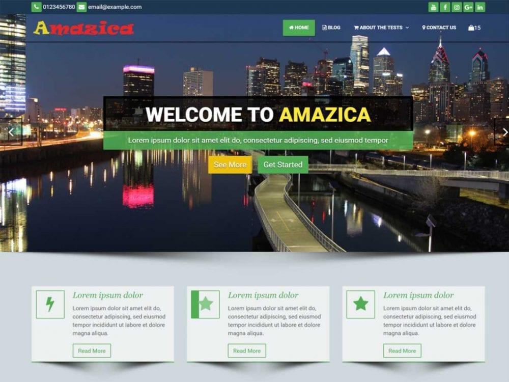 Free Amazica Business WordPress theme