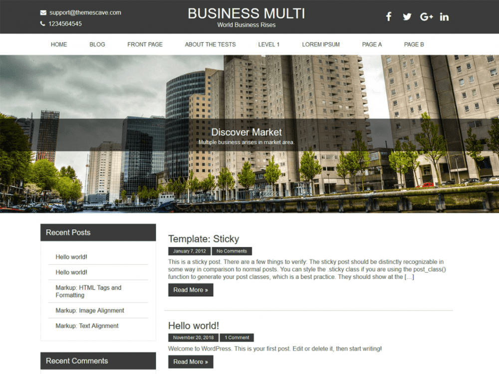 Free Business Multi Lite WordPress theme