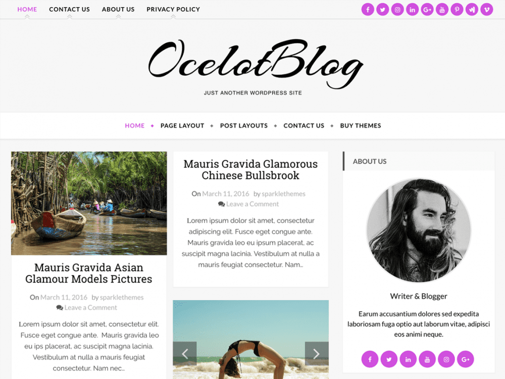 Free Ocelot Wordpress theme