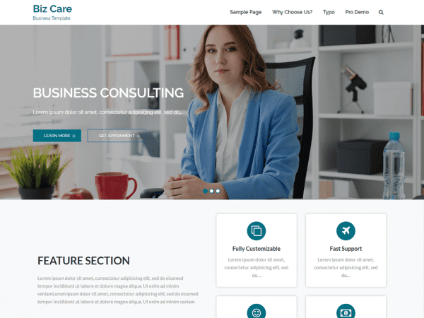 Free BizCare WordPress theme