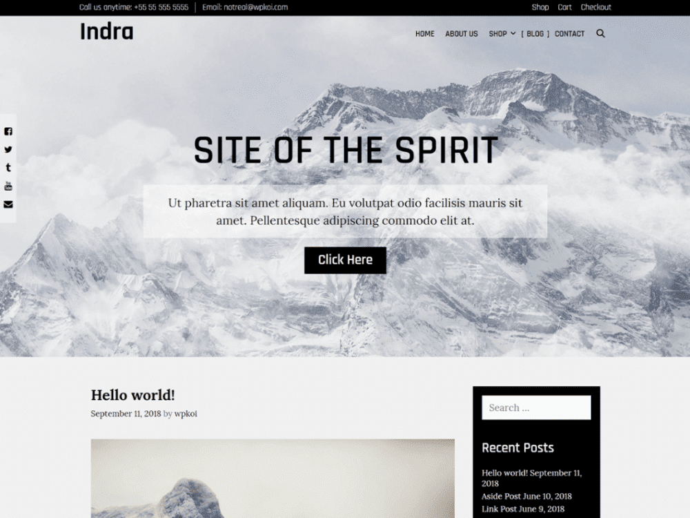 Free Indra WordPress theme