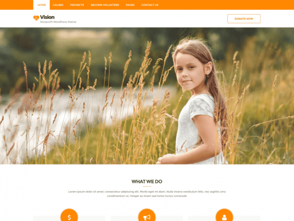 Free Vision Lite WordPress theme