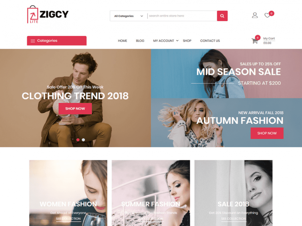 Free Zigcy Lite WordPress theme