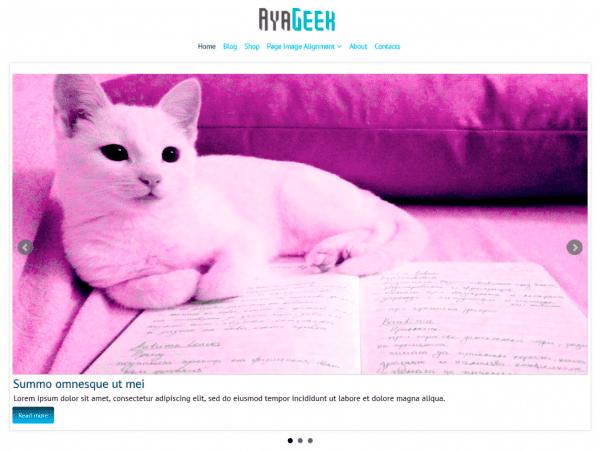 Free AyaGeek WordPress theme