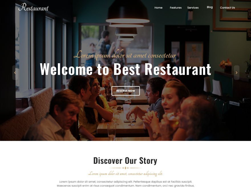 Free Best Restaurant WordPress theme