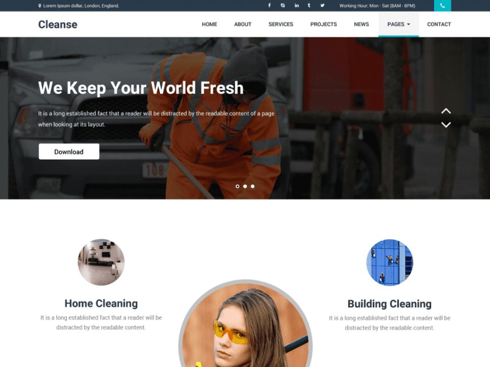 Free Cleanse WordPress theme
