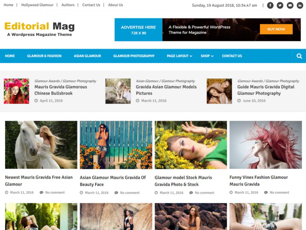 Free Editorialmag Lite WordPress theme