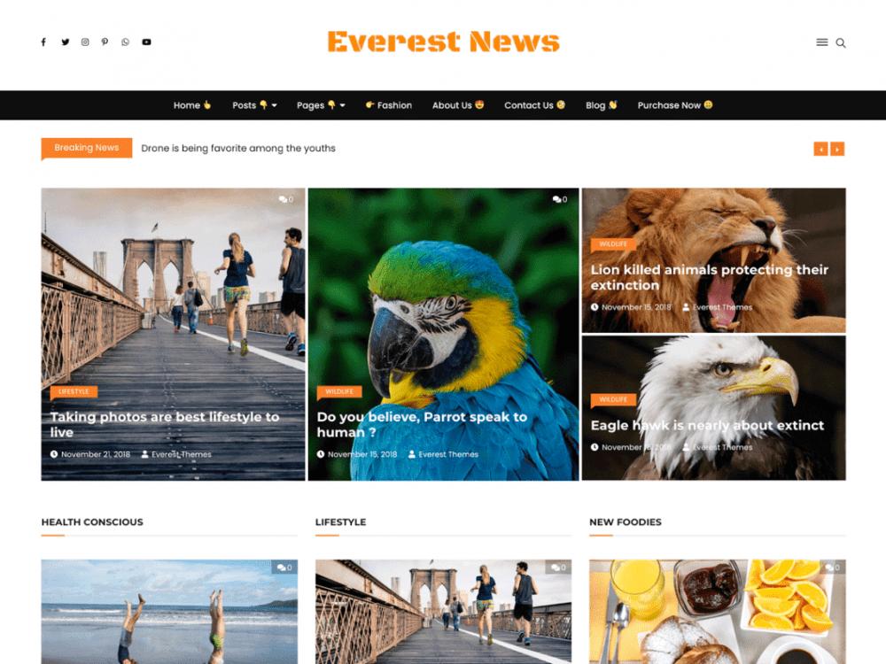 Free Everest News Lite WordPress theme
