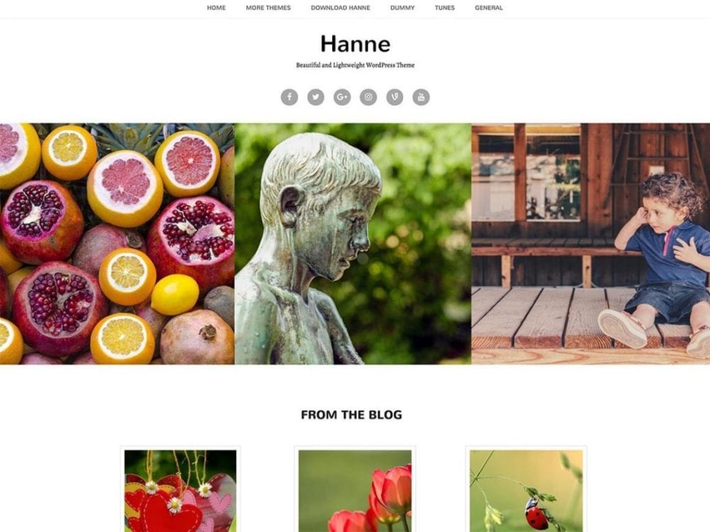Free Hanne WordPress theme