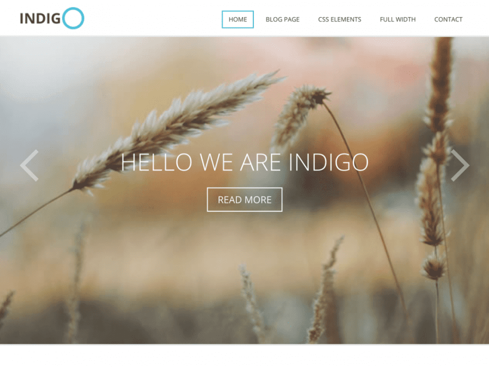 Free Indigo Lite WordPress theme