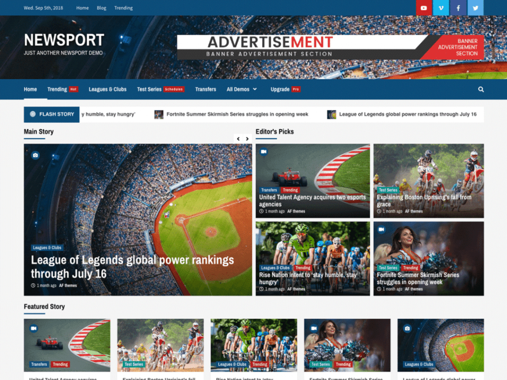 Free Newsport WordPress theme