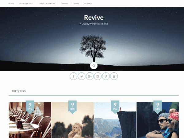 Free Revive WordPress theme