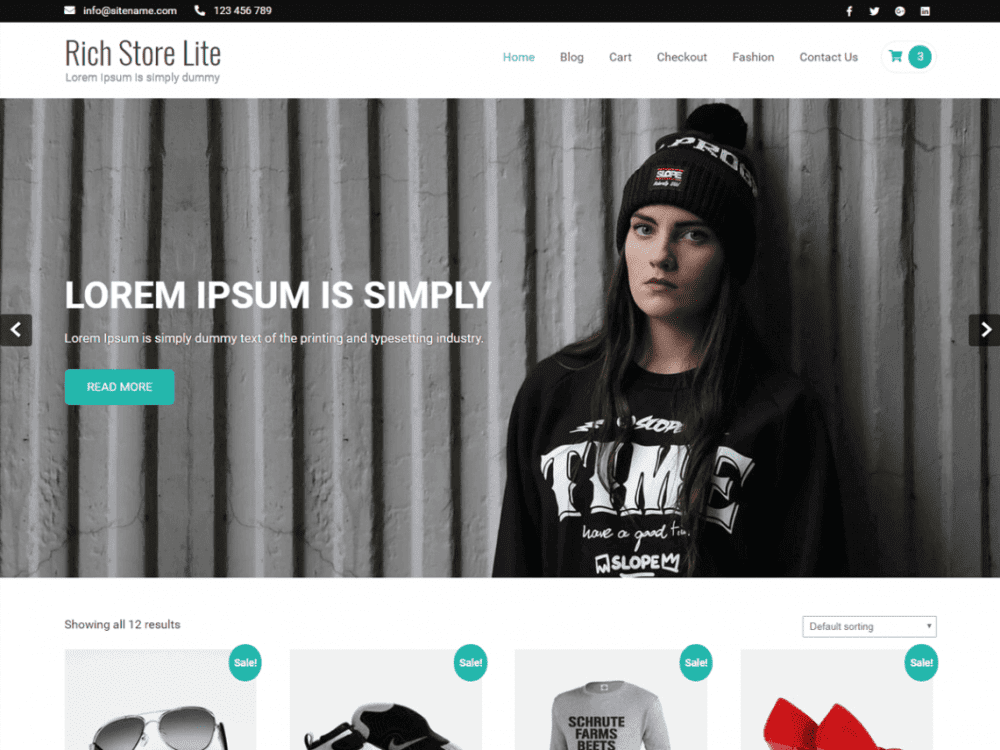 Free Rich Store Lite WordPress theme