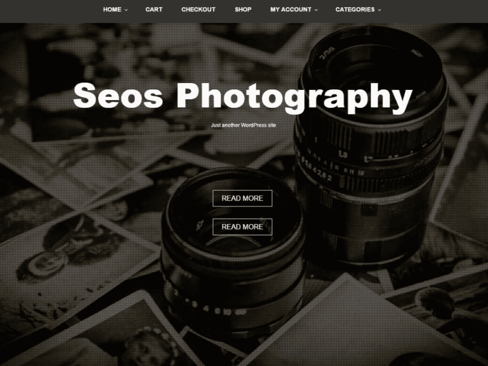 Free Seos Photography WordPress theme