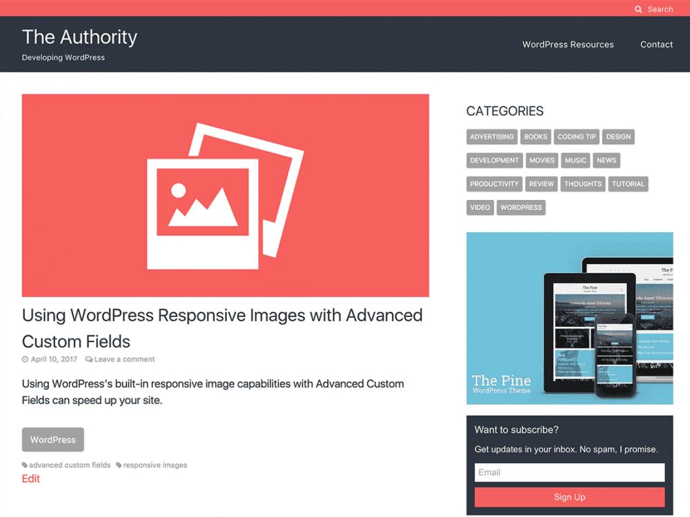 Free The Authority WordPress theme