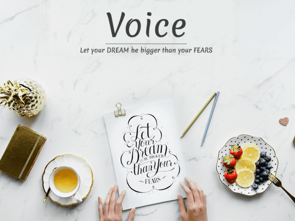 Free Voice Blog WordPress theme