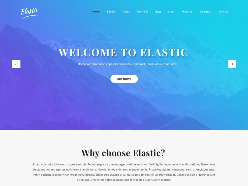 Free SKT Elastic WordPress theme