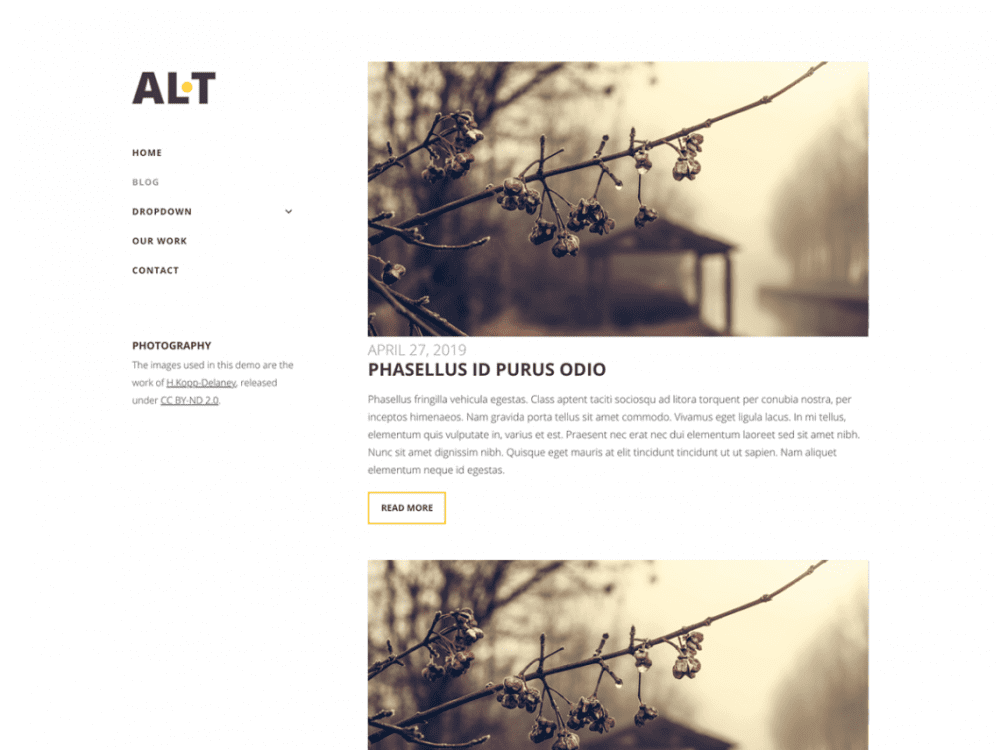 Free Alternate Lite WordPress theme