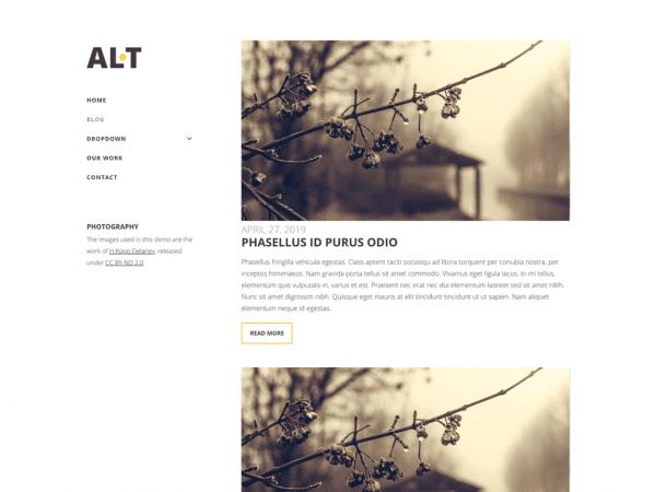 Free Alternate Lite WordPress theme