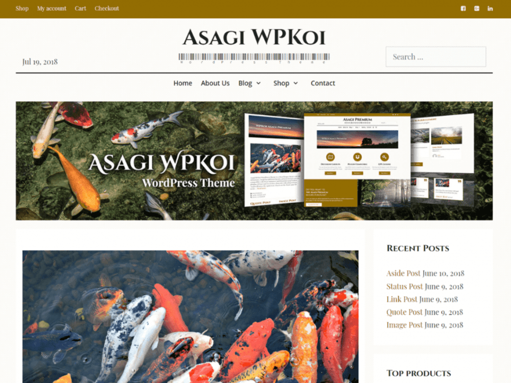 Free Asagi WordPress theme