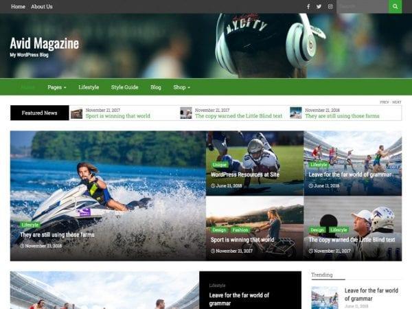 Free Avid Magazine WordPress theme