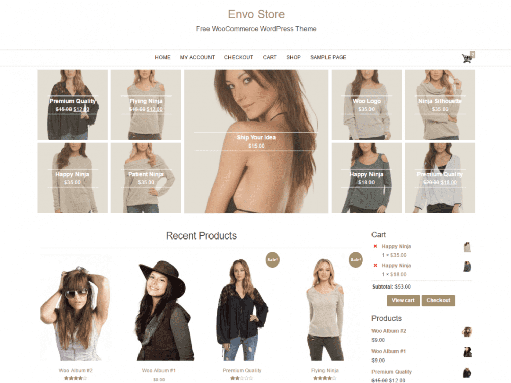 Free Envo Store WordPress theme