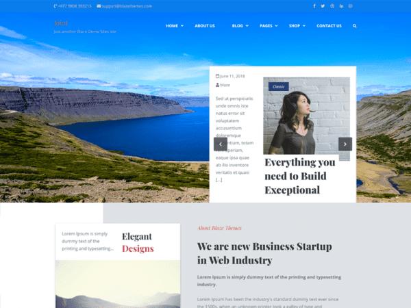 Free Joint WordPress theme