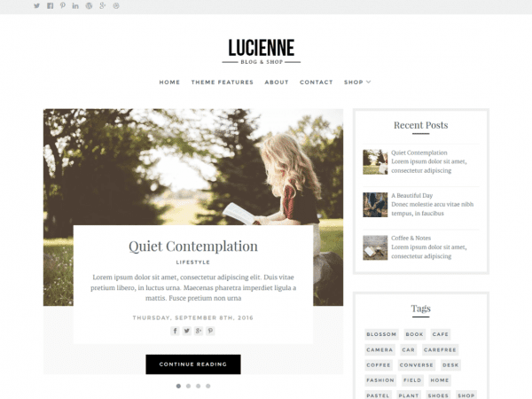 Free Lucienne WordPress theme