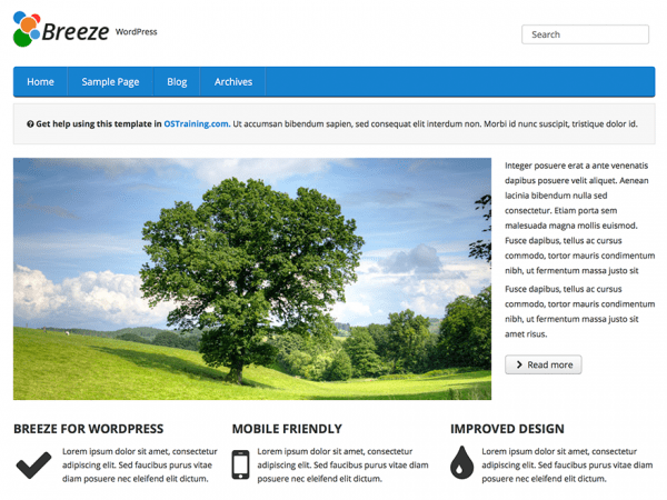 Free OSTraining Breeze WordPress theme