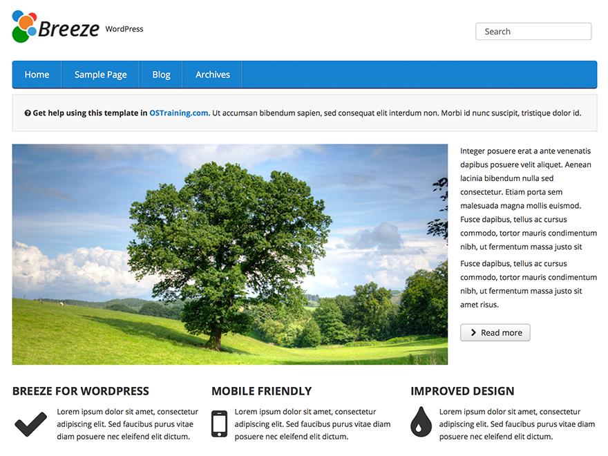 Free OSTraining Breeze WordPress theme