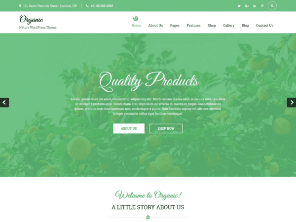 Free Organic Lite WordPress theme