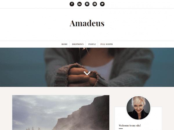 Free Amadeus WordPress theme