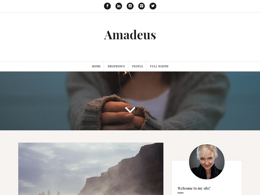 Free Amadeus WordPress theme