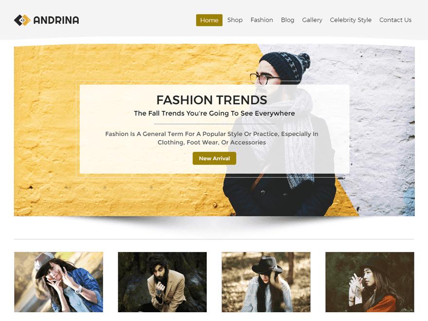 Free Andrina Lite WordPress theme