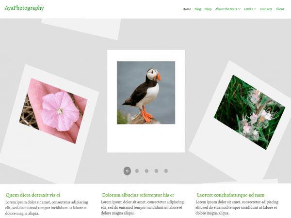 Free AyaPhotography WordPress theme