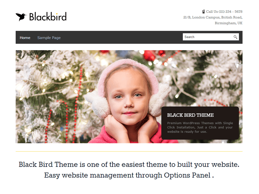 Free BlackBird WordPress theme