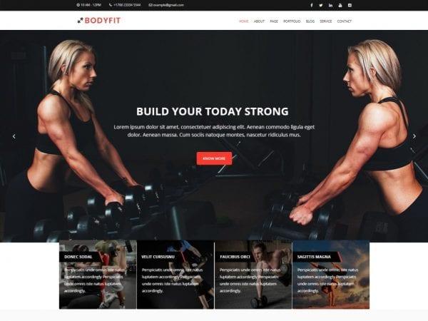 Free Bodyfit WordPress theme