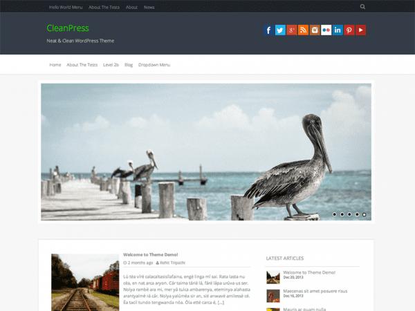 Free CleanPress WordPress theme